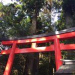 神奈川のパワースポット 箱根神社